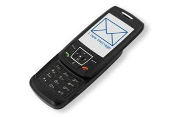 Налог можно будет оплатить СМС сообщением